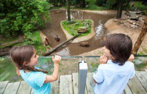 Fotografie: Ouwehands Dierenpark Rhenen